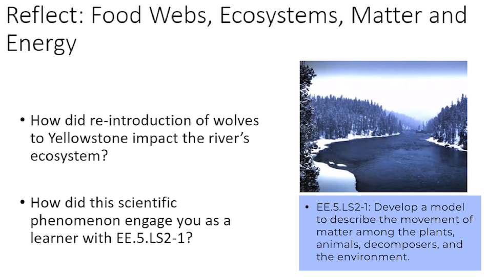 A sample lesson about food webs, ecosystems, matter and energy, an image of a frozen river